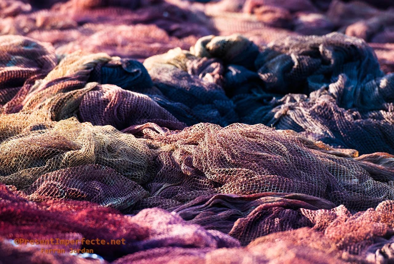 Fishnet seas (I)