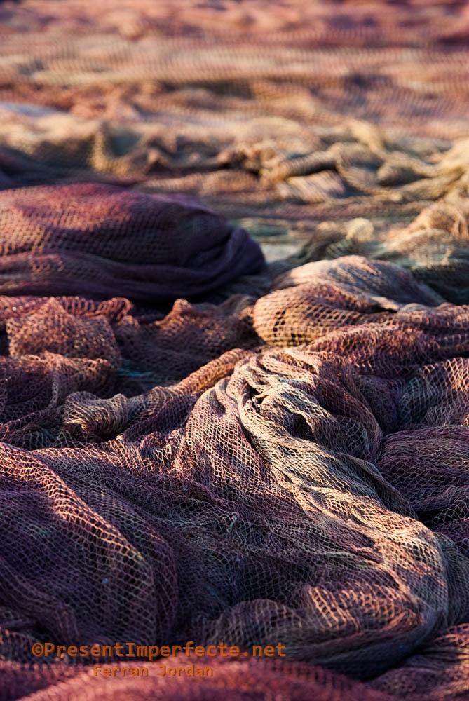 Fishnet seas (II)