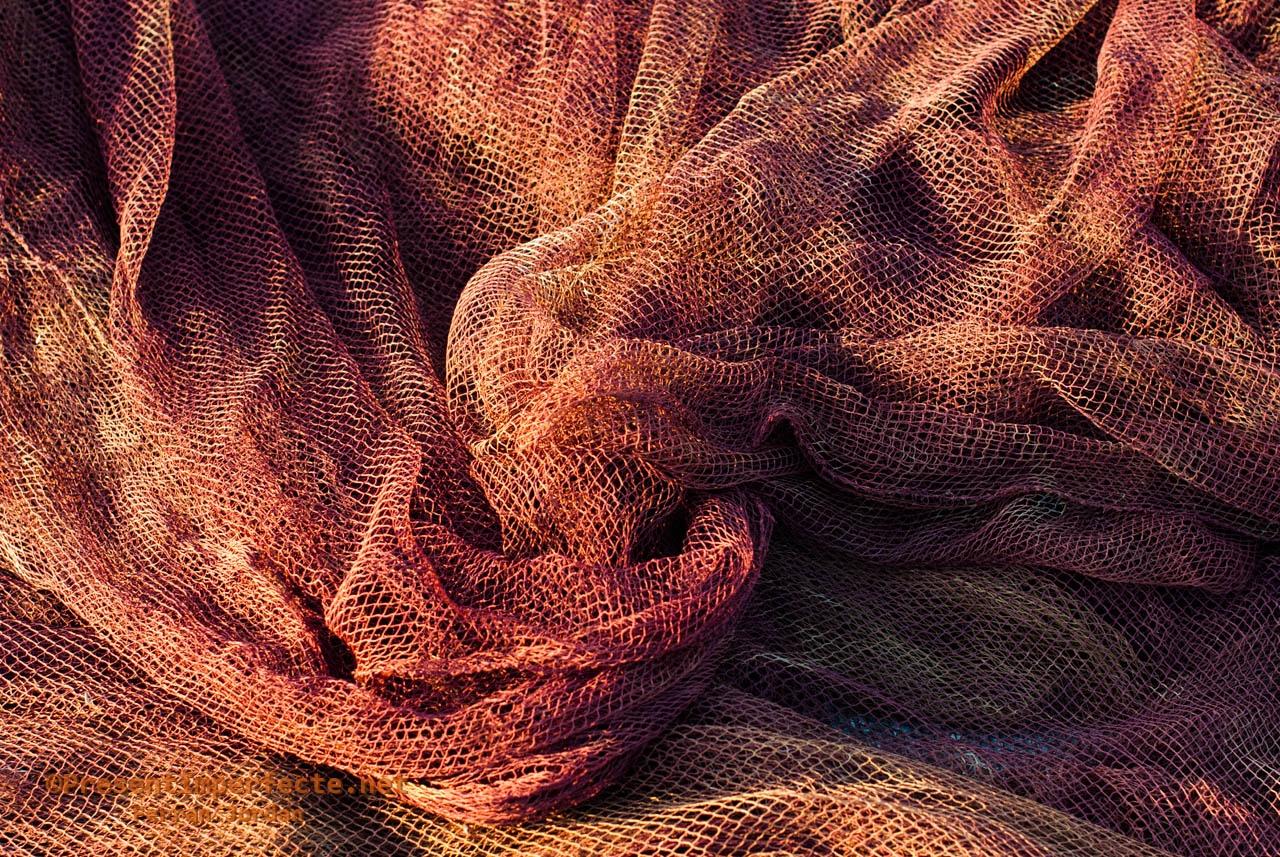 Fishnet seas (III)