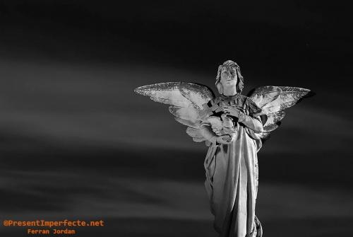Àngel nocturn